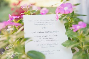 Sarasota Wedding Photographer 5