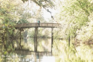 Hillsborough River State Park Couples Session 10