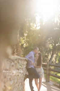 safety harbor engagement 12