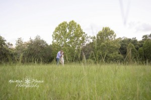 safety harbor engagement 15