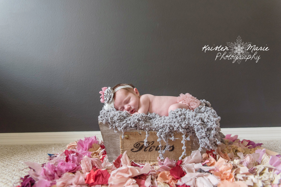 Tampa newborn photography 4