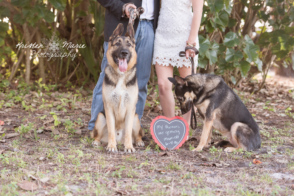 Palm Harbor Wedding Photographer 2