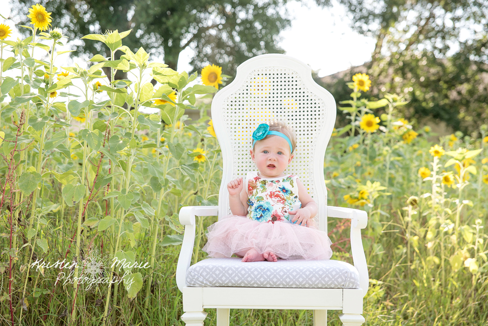 Avery Sunflower & Wildflower Plant City Session 1