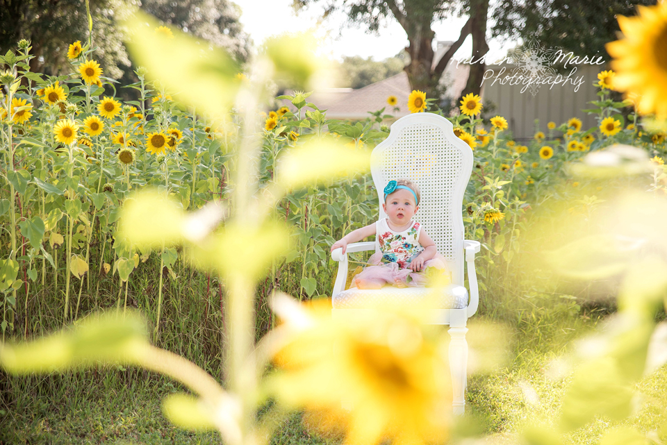 Avery Sunflower & Wildflower Plant City Session 2