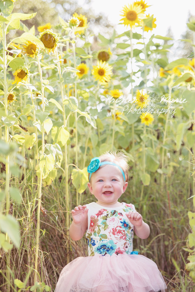 Avery Sunflower & Wildflower Plant City Session 6