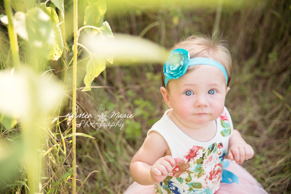 Avery Sunflower & Wildflower Plant City Session 7