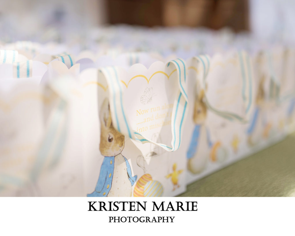 Tampa Baby Shower Peter Rabbit Themed Tampa Virginia And